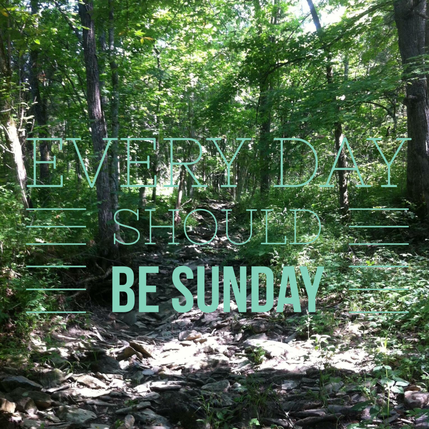 Every day should be sunday forest pic with title added